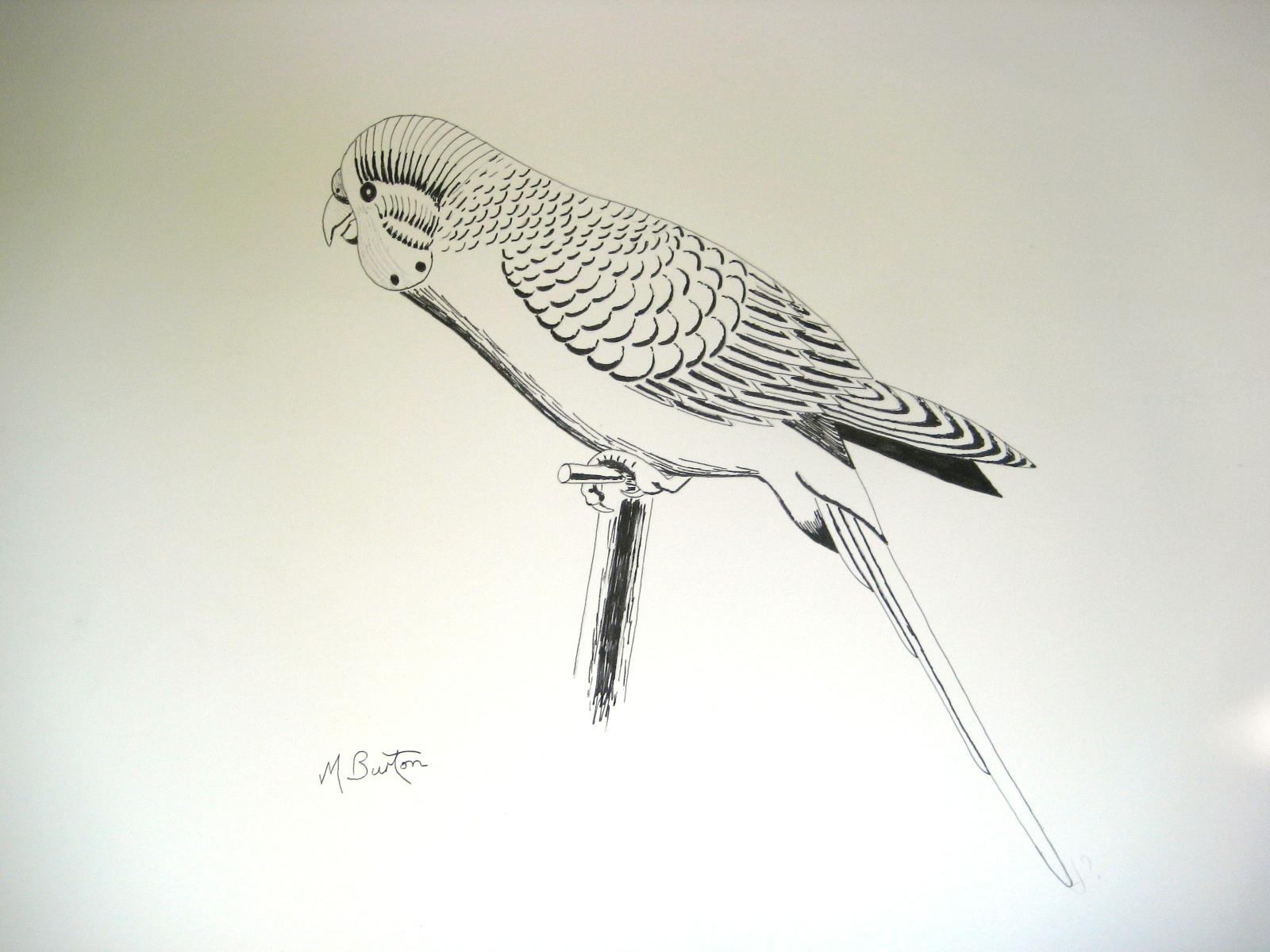 Simple Continuous Line Art : Gallery 1965 74 mick burton