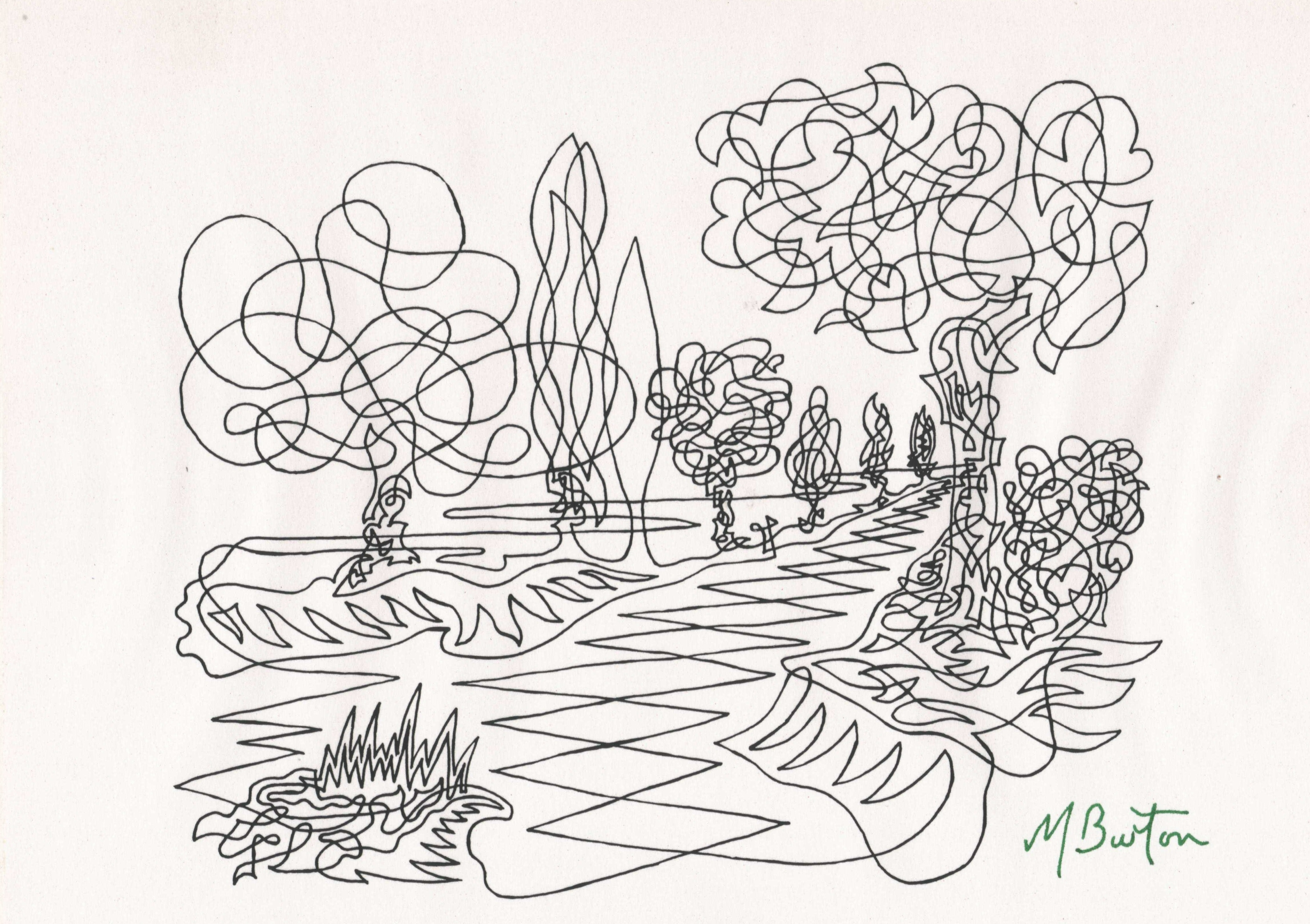 "Contour Line Drawing Of Natural Forms : Why ""continuous line what is the point of it mick"