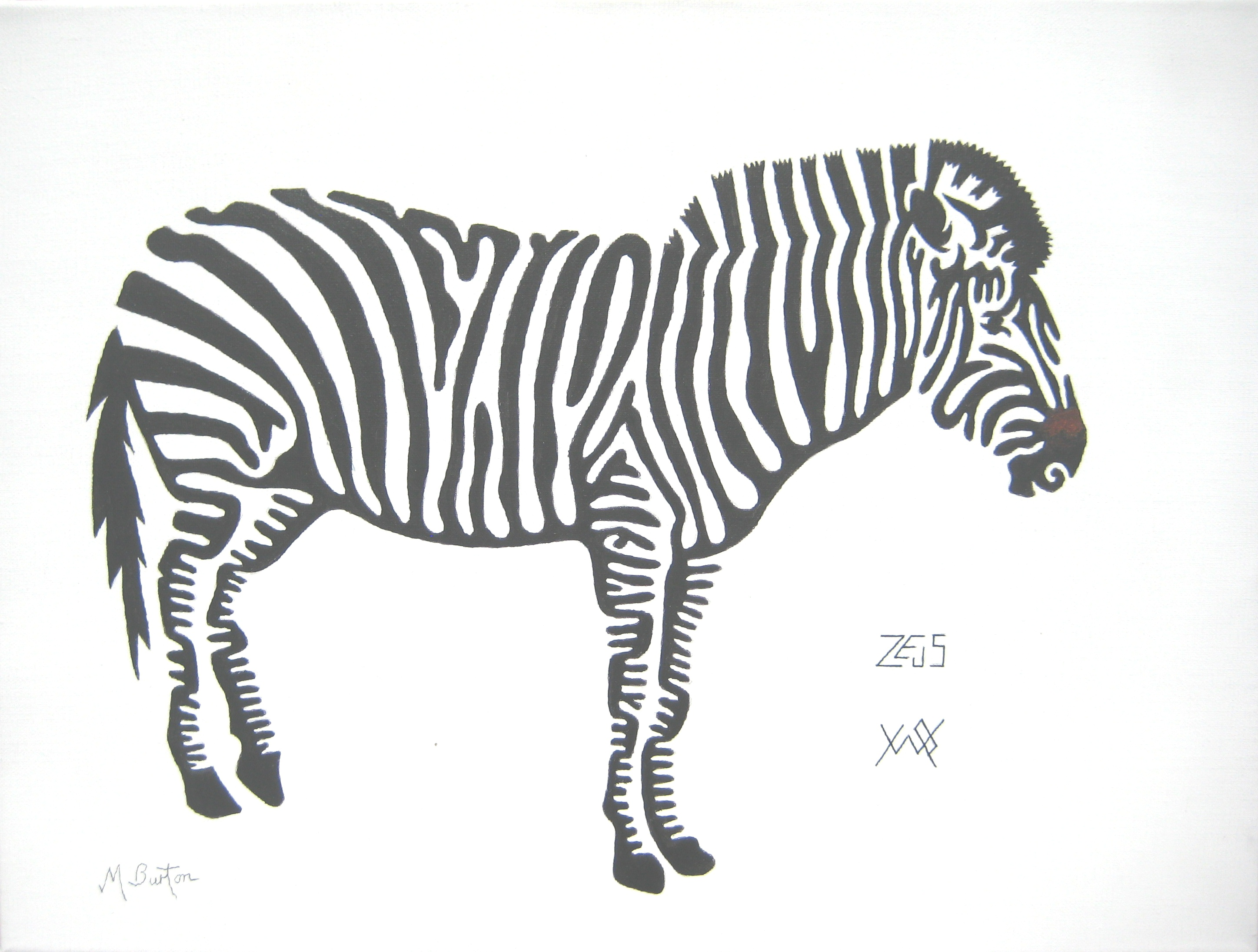 Line Drawing Zebra : Association of animal artists mick burton