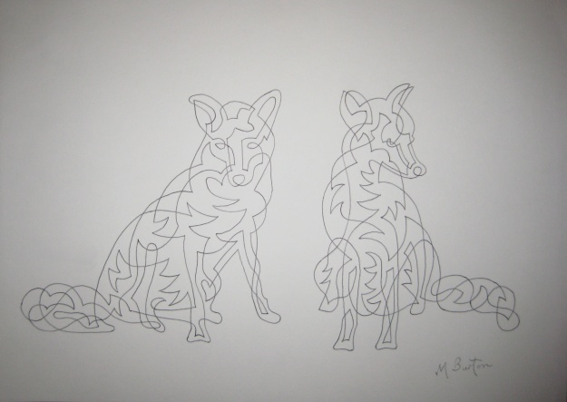 Gledhow Foxes Sunbathing, continuous line. Mick Burton