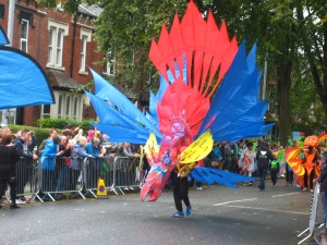 Red and blue costume in the Leeds Carnival matched the drizzle. Photo by Mick Burton, continuous line artist.