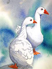 A Pair of Geese, painted by Charles Kelly in a demonstration at Alwoodley Art Group in 2013.