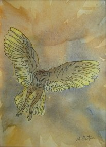 Continuous line drawing of Barn Owl onto Wet on Wet watercolour, 2015. Mick Burton.