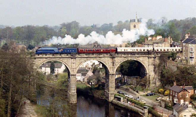 800px-Mallard_on_Knaresborough_viaduct_-_geograph.org.uk_-_2929569 - Copy